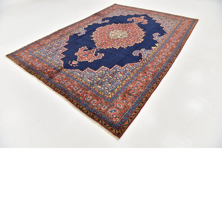 HandKnotted 7' 7 x 11' Viss Persian Rug
