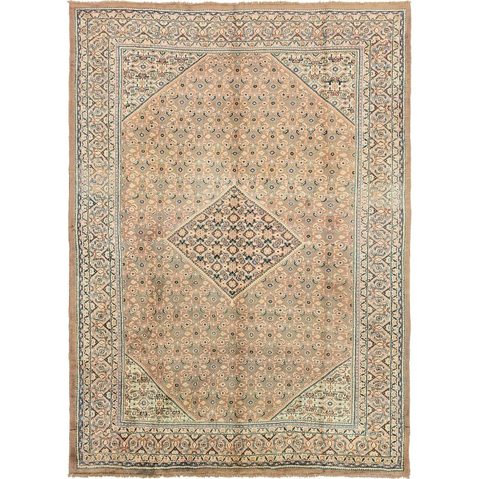 10' x 13' 7 Farahan Persian Rug