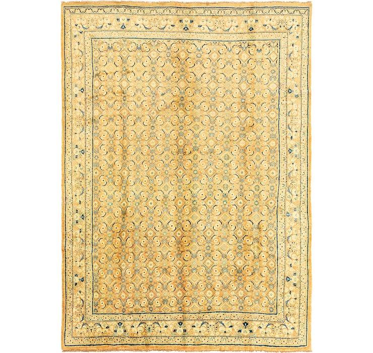 9' 9 x 13' 7 Farahan Persian Rug