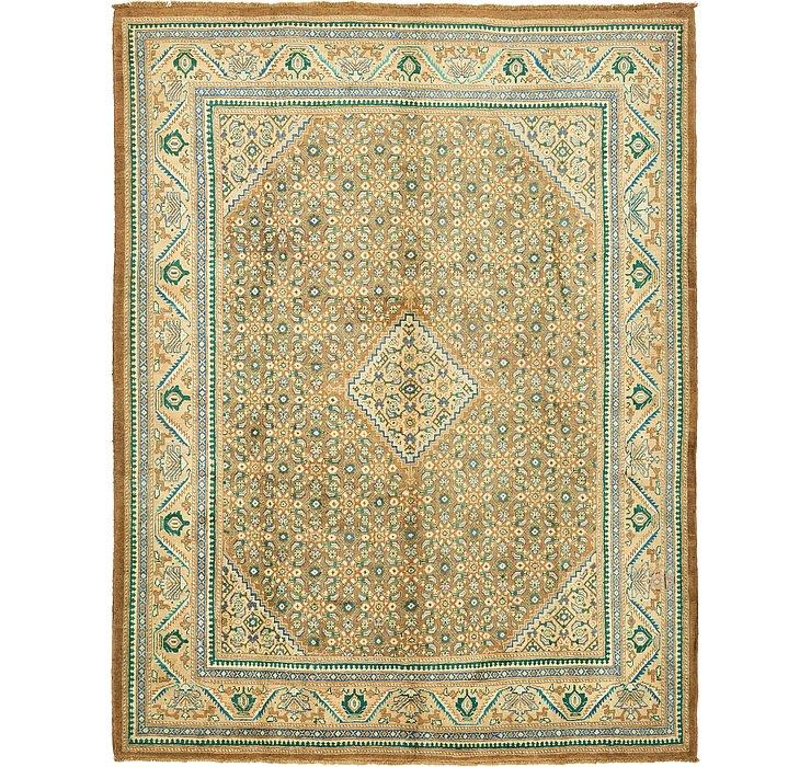 10' 1 x 13' 1 Farahan Persian Rug