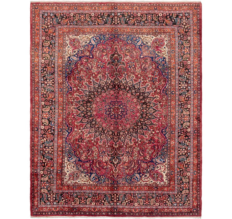 10' 3 x 13' Birjand Persian Rug