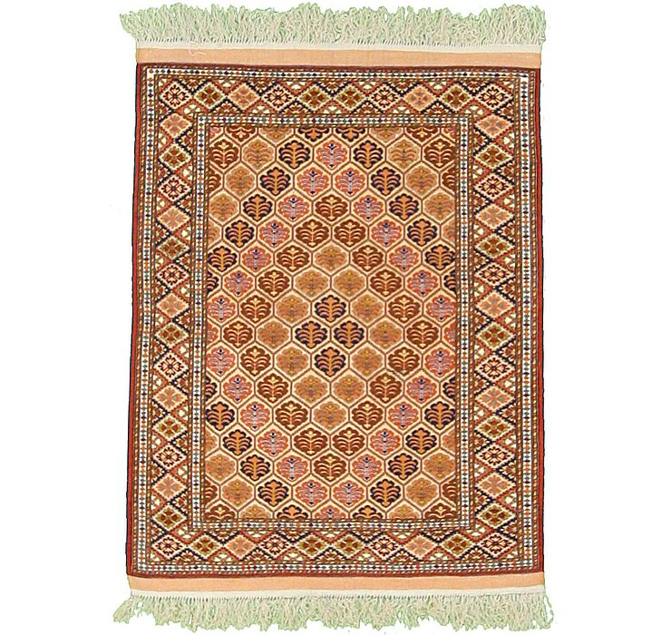 3' 11 x 5' 3 Torkaman Persian Rug