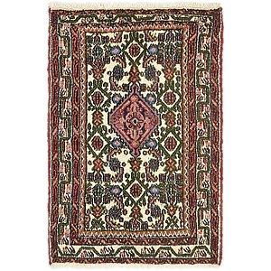 2' 7 x 3' 10 Hossainabad Persian Rug