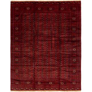 9' 10 x 12' 9 Torkaman Oriental Rug