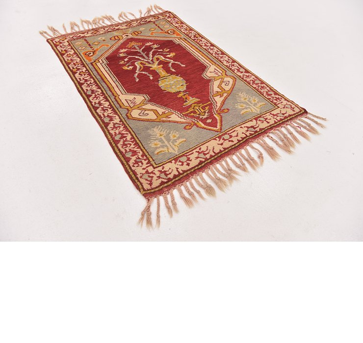 2' 9 x 4' Anatolian Rug