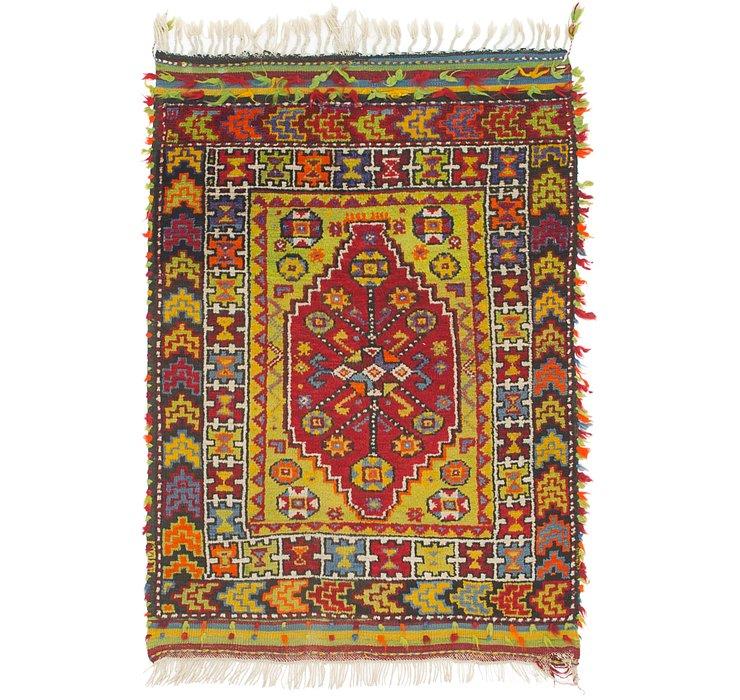 3' 4 x 5' Anatolian Rug