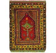 Link to 3' 2 x 4' 4 Anatolian Rug