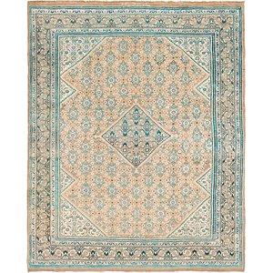 Link to 9' 10 x 12' 2 Farahan Persian Rug page
