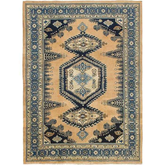 9' 8 x 13' Viss Persian Rug