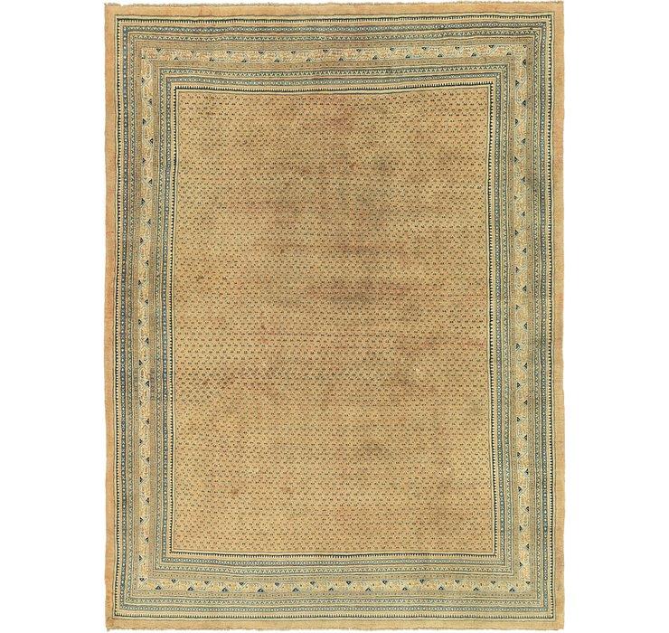 10' x 13' 4 Botemir Persian Rug