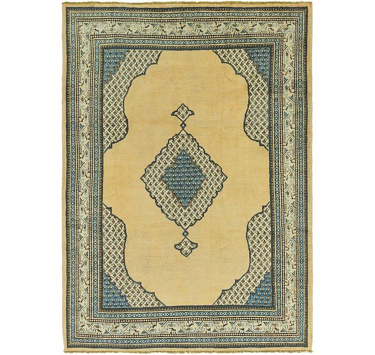 8' 3 x 11' 10 Botemir Persian Rug