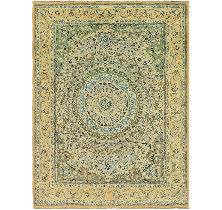 9' 8 x 12' 8 Birjand Persian Rug