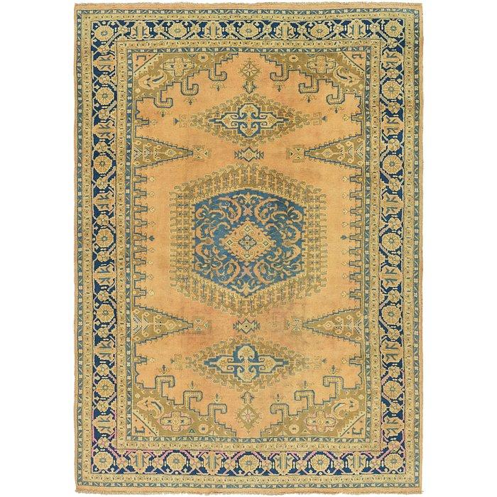 8' 3 x 11' 4 Viss Persian Rug