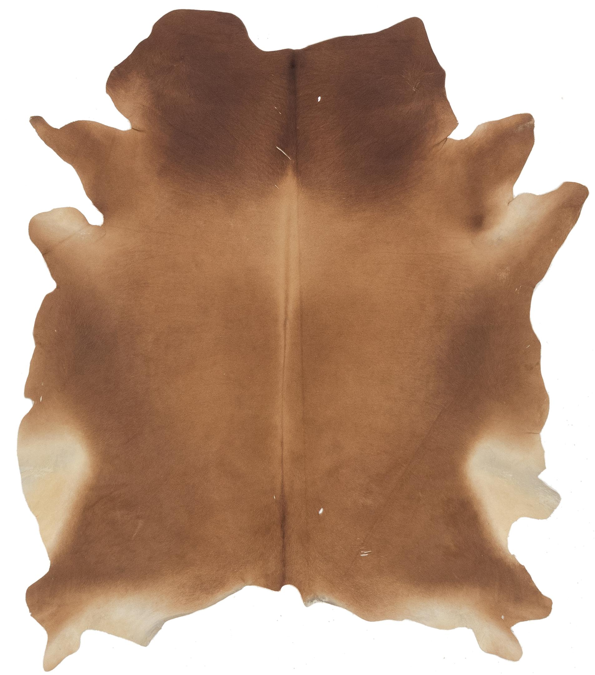 Brown 4 9 X 6 Cowhide Rug Irugs Uk
