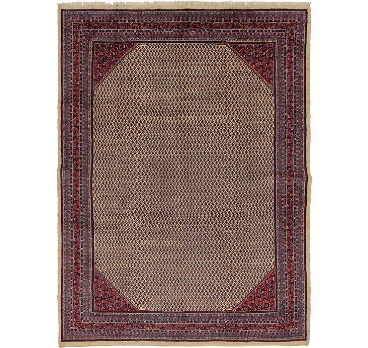 10' x 13' 6 Botemir Persian Rug