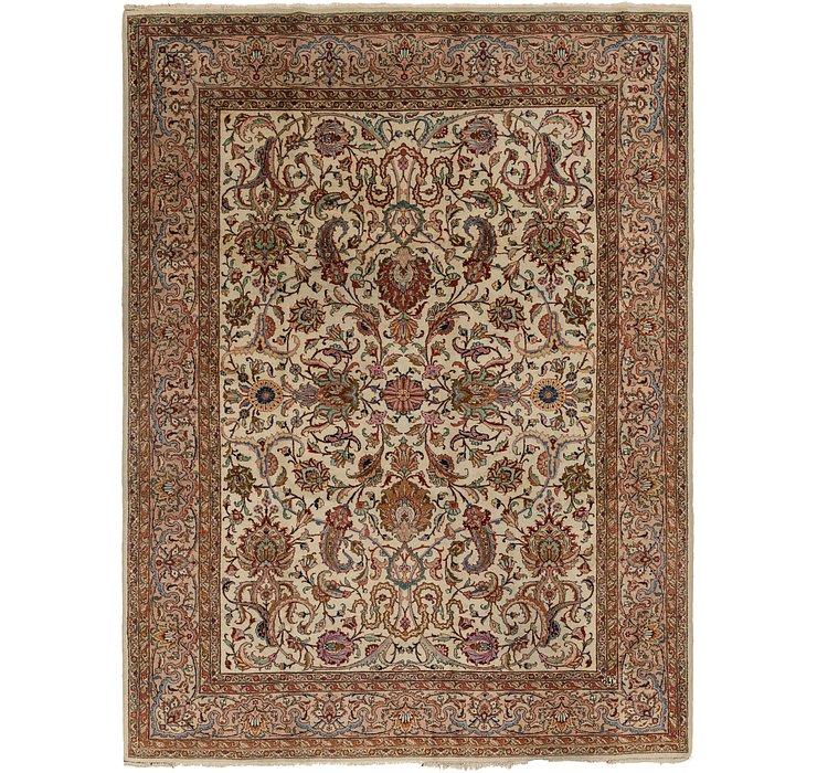 9' 4 x 12' 5 Classic Agra Rug