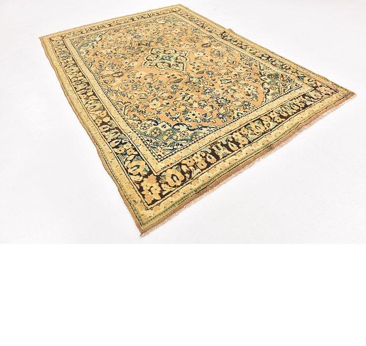 7' x 10' Farahan Persian Rug