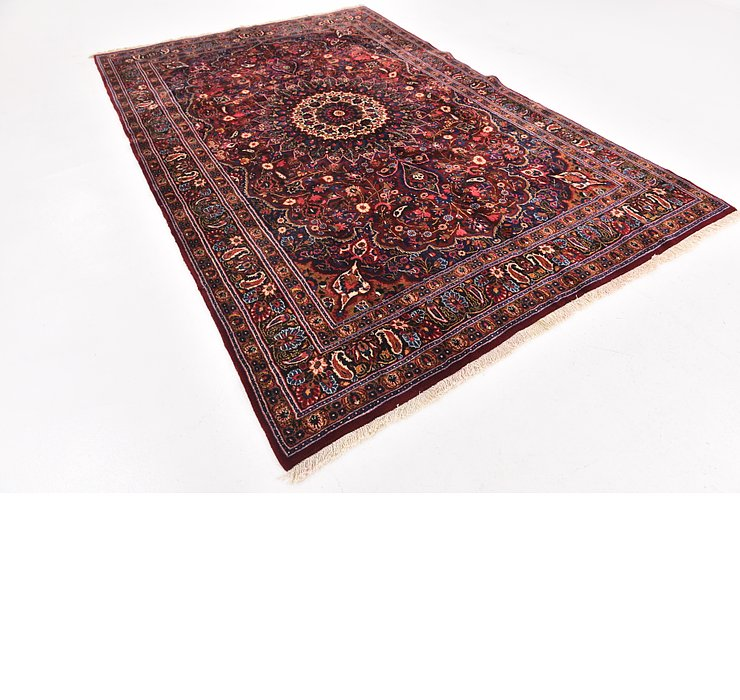 6' 9 x 10' 4 Birjand Persian Rug