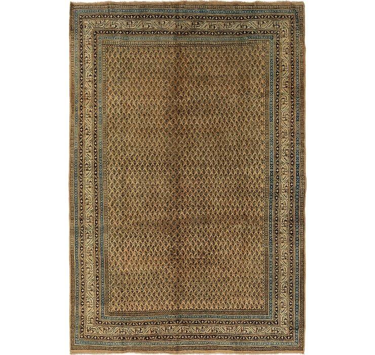 7' x 10' 5 Botemir Persian Rug