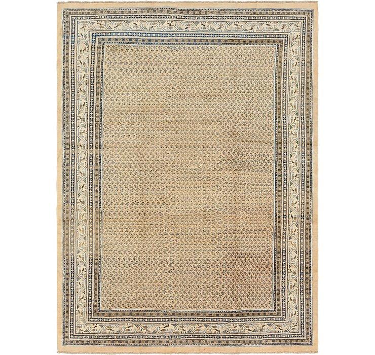 9' x 12' 7 Botemir Persian Rug
