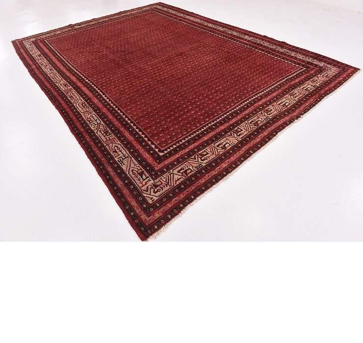 HandKnotted 9' x 12' 5 Botemir Persian Rug
