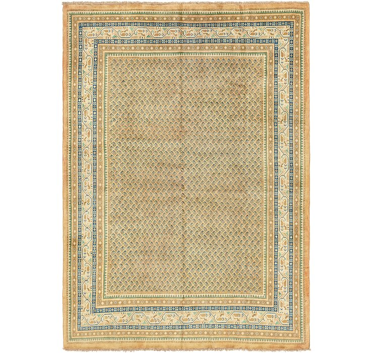 7' 7 x 11' Botemir Persian Rug