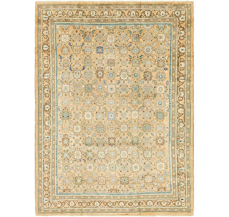 8' 9 x 11' 6 Farahan Persian Rug