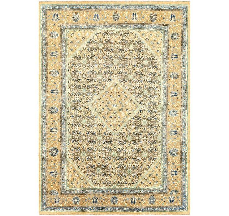 9' 3 x 13' 3 Farahan Persian Rug