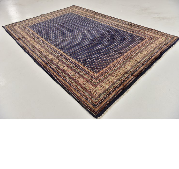 HandKnotted 7' x 10' 4 Botemir Persian Rug