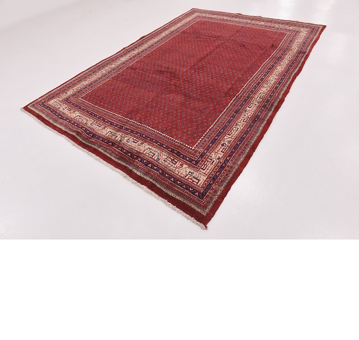 HandKnotted 7' x 10' 6 Botemir Persian Rug