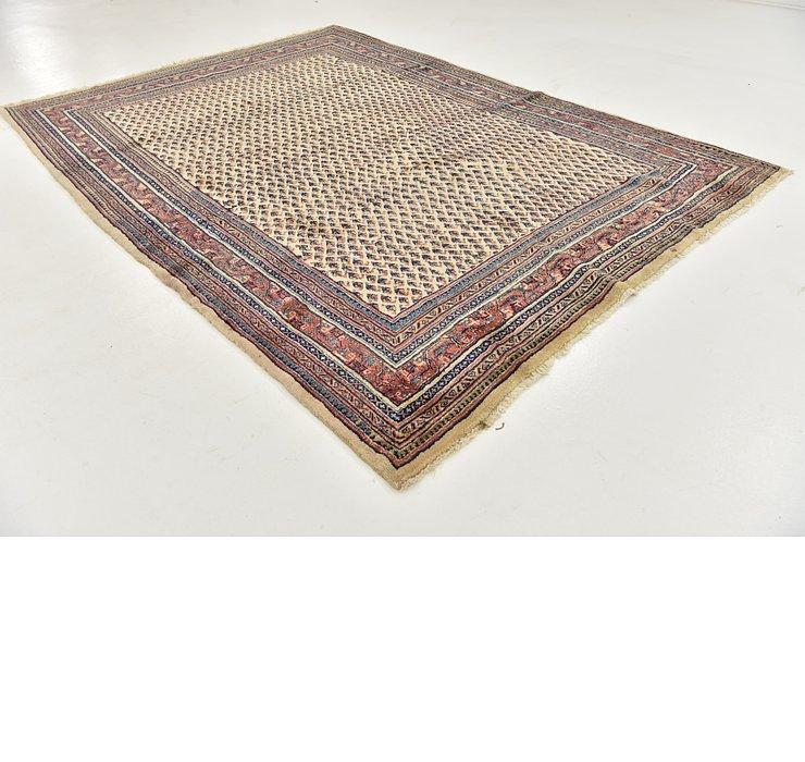 7' 3 x 10' 3 Botemir Persian Rug