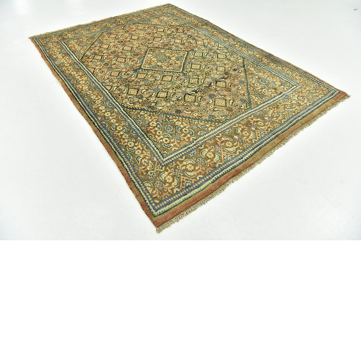 6' 7 x 9' Farahan Persian Rug