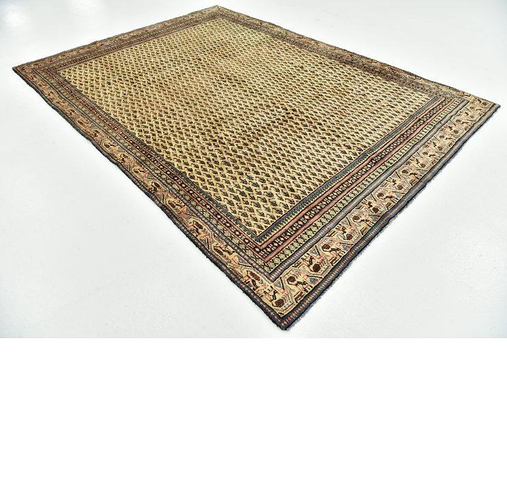7' x 9' 10 Botemir Persian Rug