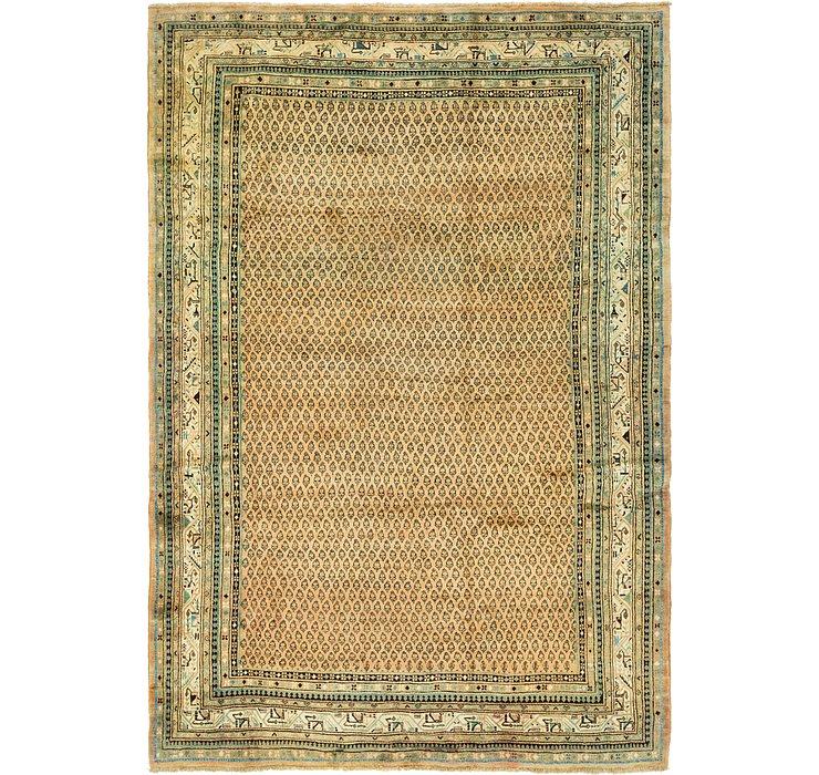 8' x 11' 5 Botemir Persian Rug