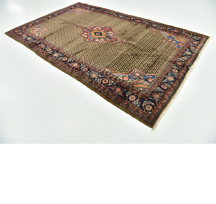 6' 8 x 10' 9 Songhor Persian Rug