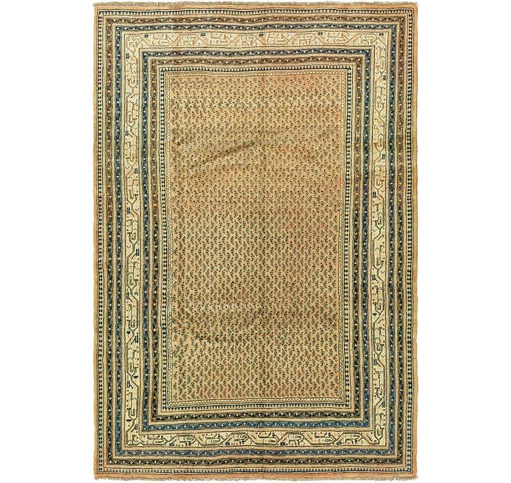 7' 10 x 10' 3 Botemir Persian Rug