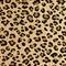 Link to variation of this rug: SKU#3125111