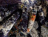 8' x 10' Arte Rug thumbnail image 6