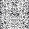 245cm x 245cm Square image